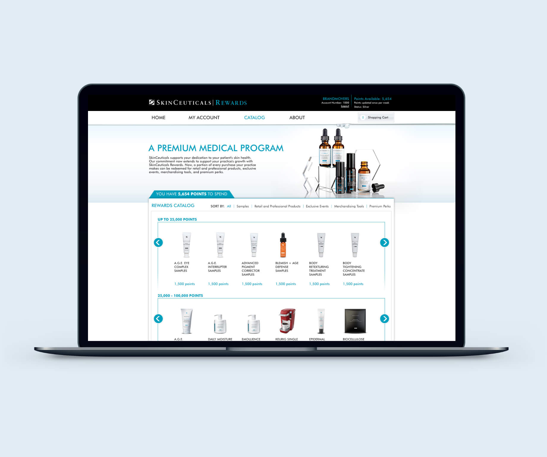 Image of SkinCeuticals Catalog Page Design